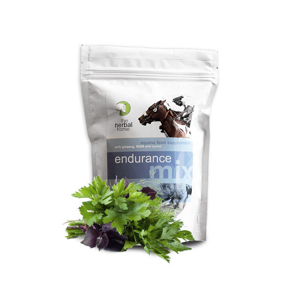 A natural endurance supplements for horses with Ginseng, MSM, Lysine and Vitamin E - Endurance Mix 500g