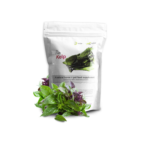 The Herbal Horse - Natural supplements for horses - Pure Kelp 500g